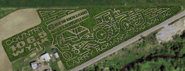 wyrk corn maze