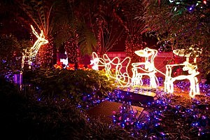 Australia Lights Up For Christmas