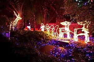 Australia Lights Up For Christmas