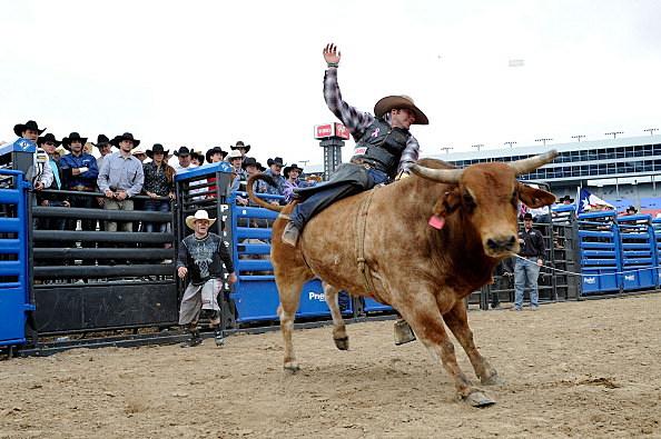 man riding a bull