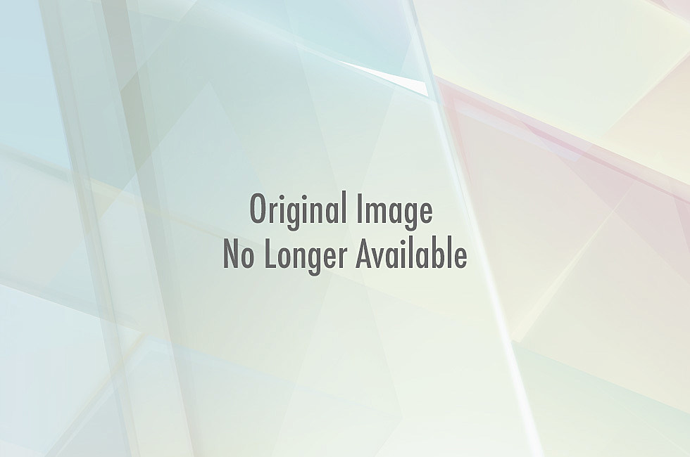 Lion trying to eat a baby