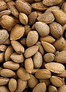 Almonds.