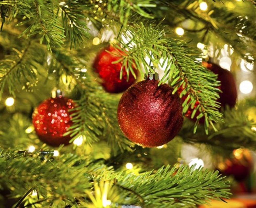 when should the christmas tree go up in your house - When Does The Christmas Tree Go Up